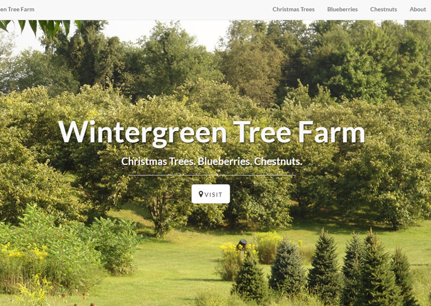wintergreen tree farm web site screen shot